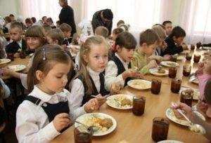 Бесплатное питание в школе в 2018 учебном году: кому положено и правила его оформления 88
